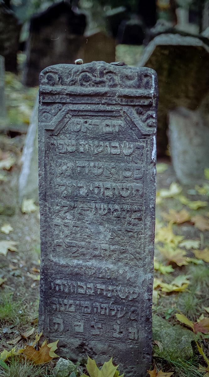 Jüdischer_Friedhof_Prag_(5_von_17)