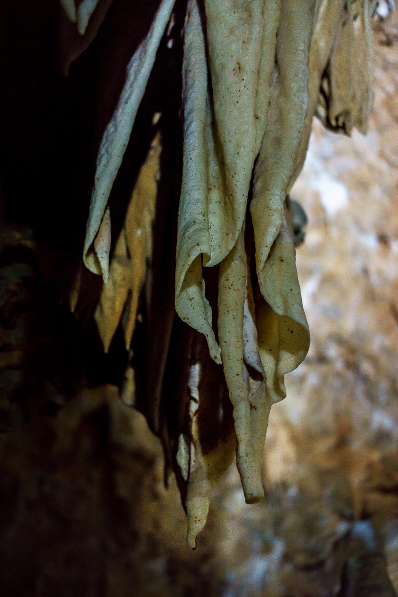 Grotte_de_Clamouse_(11_von_47)