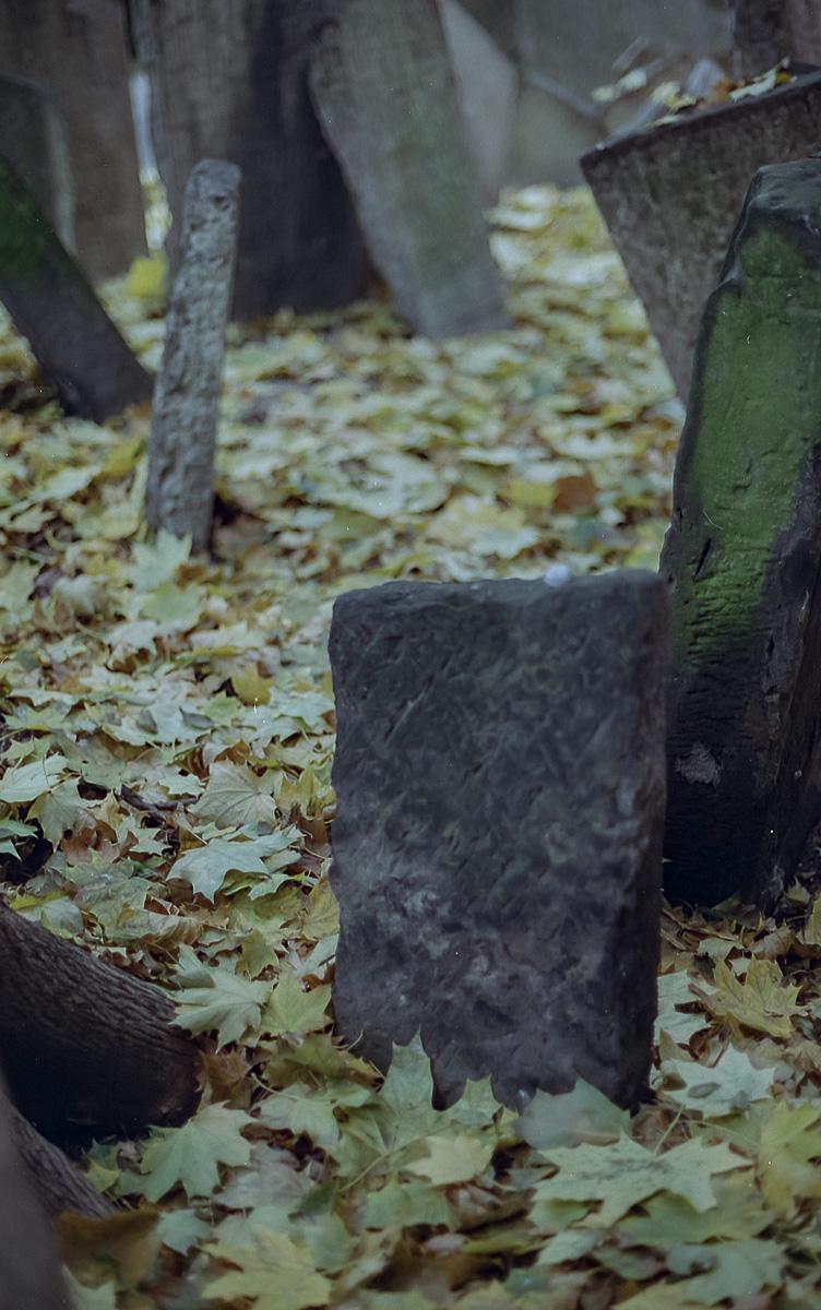 Jüdischer_Friedhof_Prag_(14_von_17)