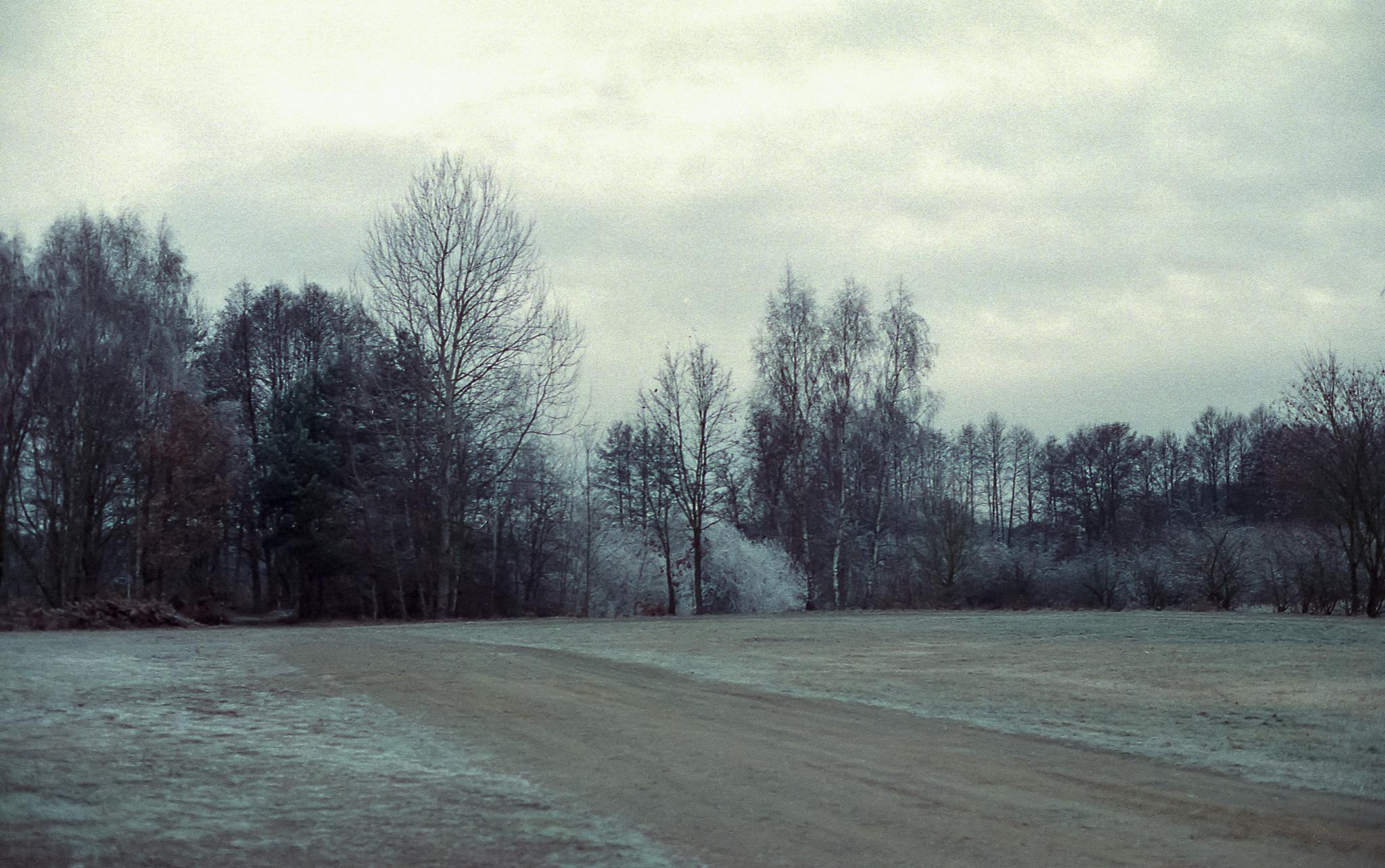 Schlepzig_(06_von_10)