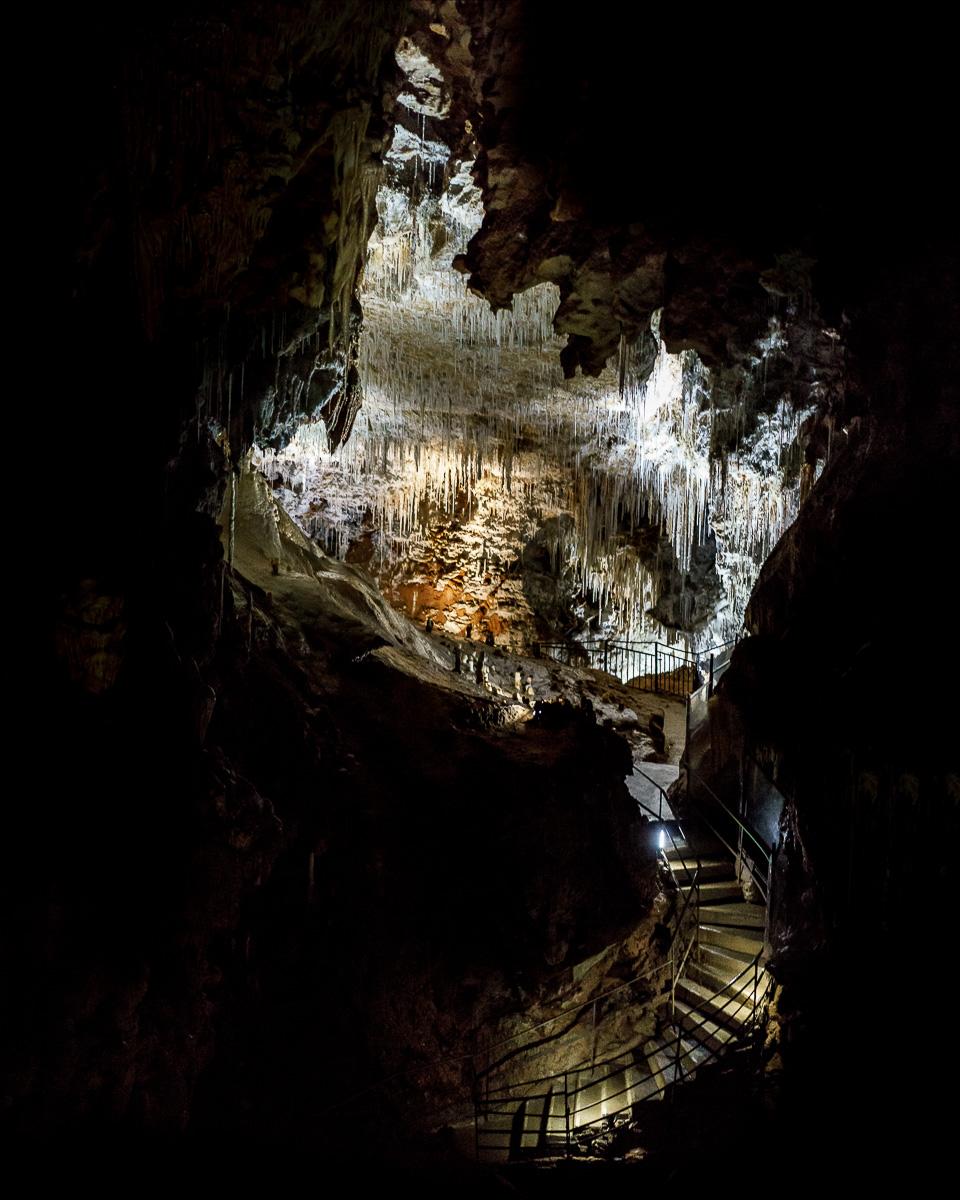 Grotte_de_Clamouse_(30_von_47)