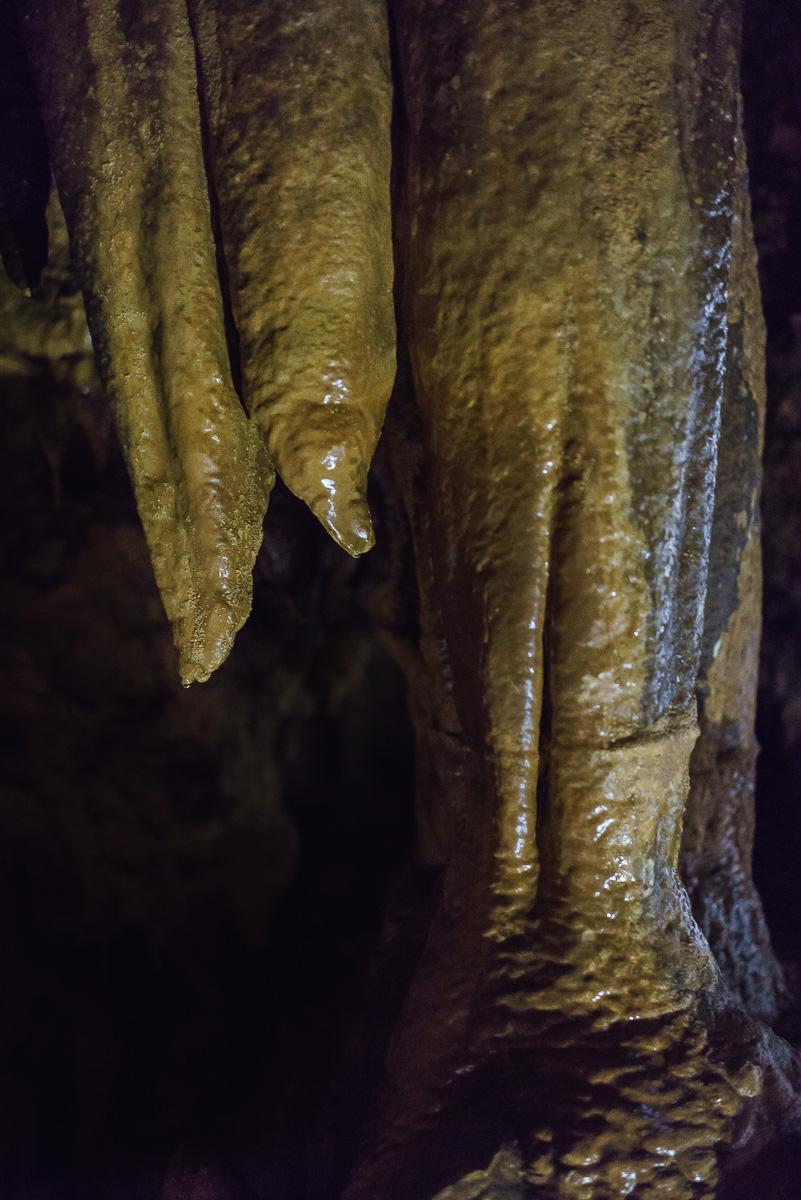 Grotte_de_Clamouse_(8_von_47)