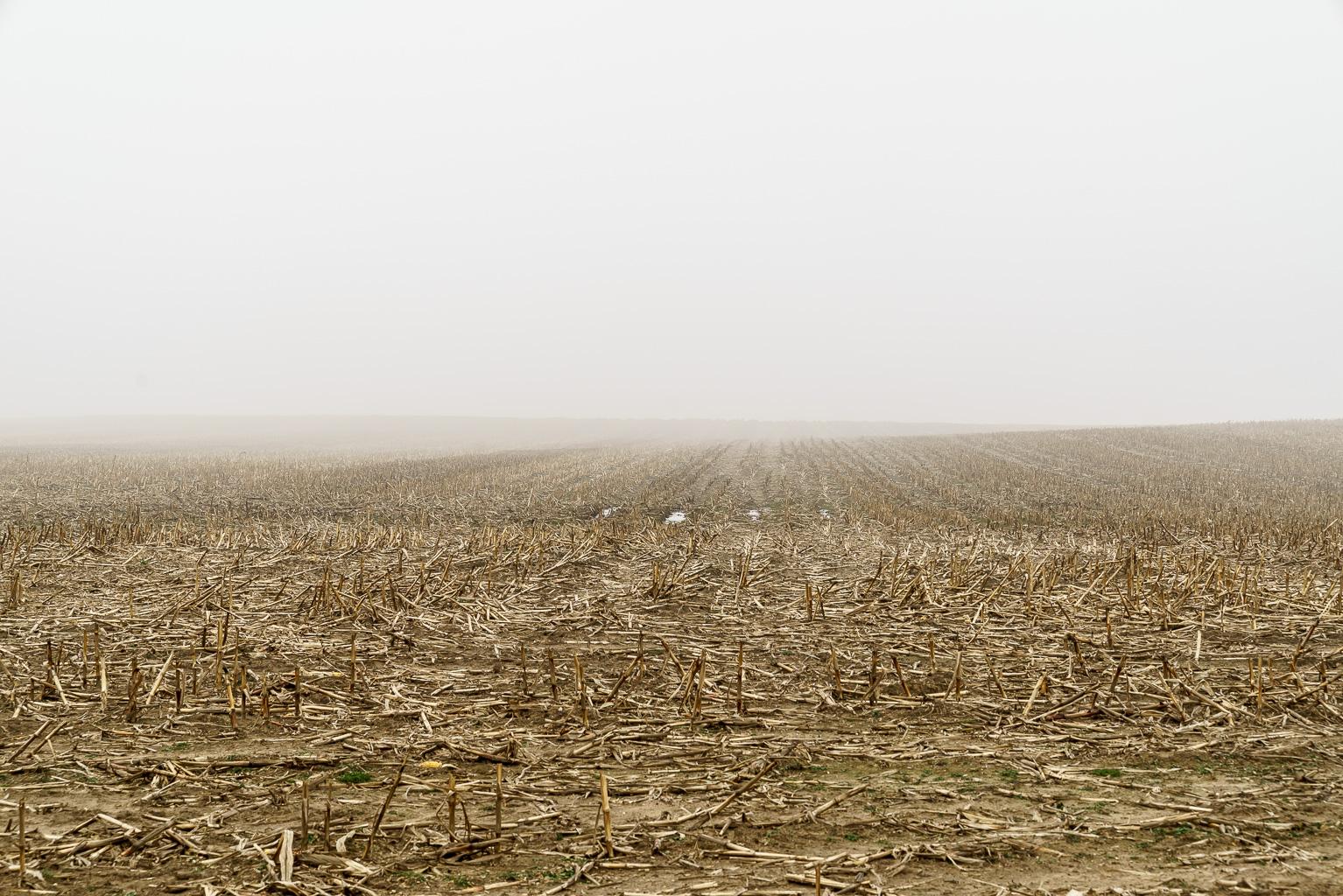 Landschaft, Umgebung, Gelände